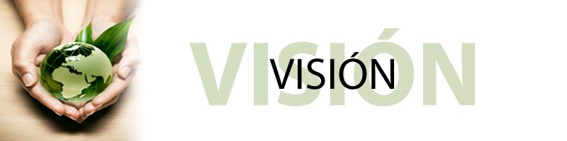 VISION-PERFIL